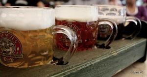 Lovaina a través de su cerveza