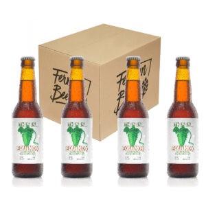 Cerveza artesana THIS IS EQUINOX – IPA – PACK (4x33cl)