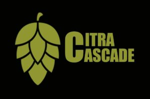 Lee más sobre el artículo Obsesión por el Citra y el Cascade: dos lúpulos que todo brewer añade a su receta