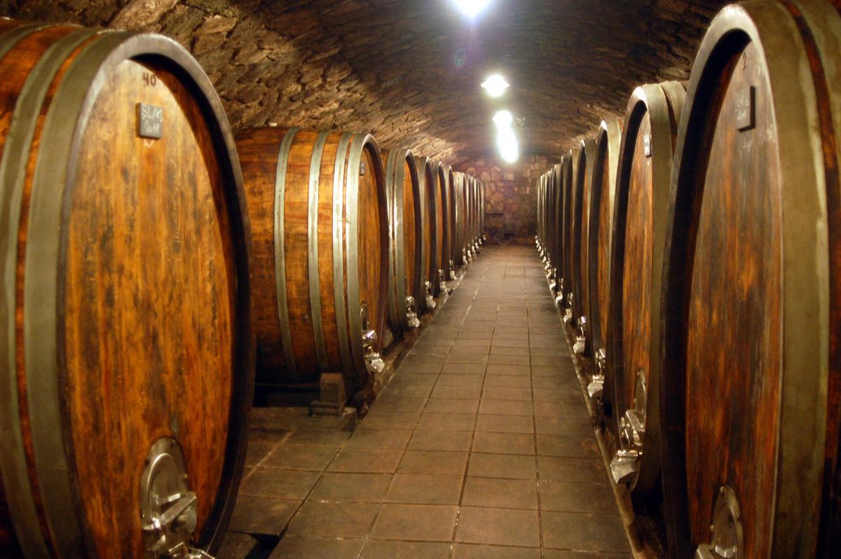 ¿Qué diferencia la fermentación baja de la alta?