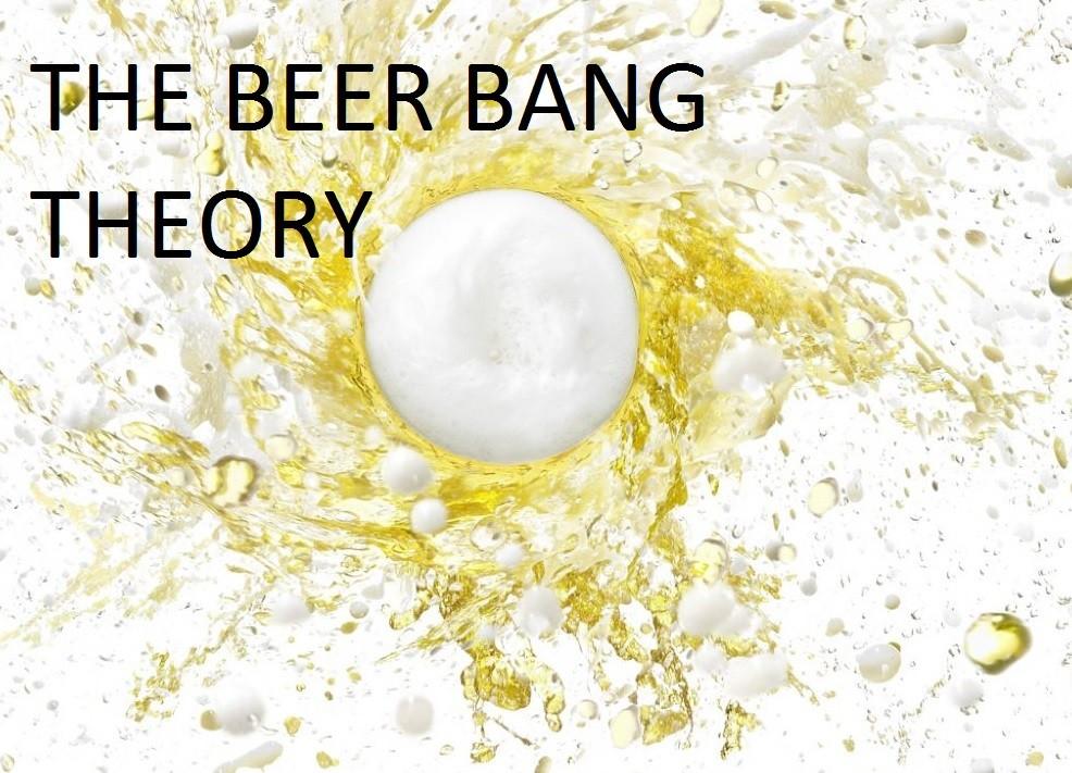 En este momento estás viendo The beer bang theory
