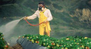 La Comisión Europea aprueba el uso del glifosato por un plazo de SOLO 18 meses. Firma para que no se renueve más