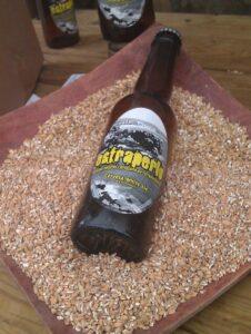 Lee más sobre el artículo ¿Podría una cerveza artesana inspirar la nueva película de David Trueba?