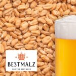 Malta Best Malz® WHEAT (Trigo) (3.5 – 6 EBC)